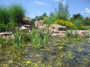 Zahrada v Moravanech 3